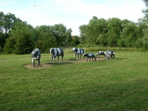 'Concrete Cows, Milton Keynes' by Stuart and Fiona Jackson (source: Wikimedia Commons)